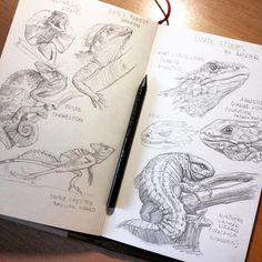 "5,896 Likes, 37 Comments - Rafater (@rafater_official) on Instagram: ""Some previous #lizard sketches for the 6th creature: #hydra  And tomorrow we'll have a GUEST…"""