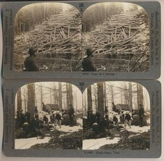 set of 14 New England Stereoviews Cranberrie Picking, Maple Sugar, Logging, Dairy Cattle available from CrowCreekUnique on ETSY