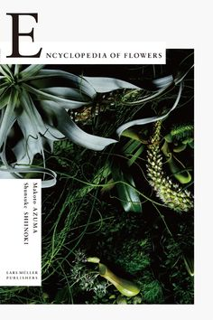 Encyclopedia of Flowers: Flower Works by Makoto Azuma photographed by Shunsuke Shiinoki: Kenya Hara, Kyoko Wada: Books - Amaz. Layout Design, Graphisches Design, Buch Design, Print Design, Floral Design, Editorial Layout, Editorial Design, Poster Retro, Flower Words