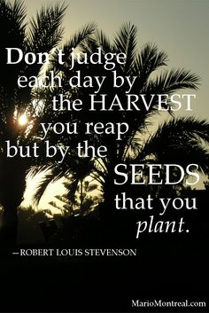 Don't judge each day by the harvest you reap, but by the seeds that you plant. – Robert Louis Stevenson #YourPositiveReinforcement