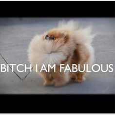 Bitch, I'm FABULOUS.  --- this is my current mantra.