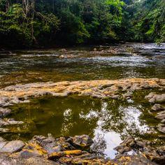 Jungle river in Darien National Park, Darien Gap, Panama