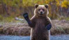 Cub Scouts Honor  - © Kevin Dietrich / National Geographic Traveler Photo Contest