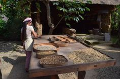 Around Ubud: Tegalalang Rice Terraces #Gotripit #travelblog #Bali #Ubud # Tegalalang #Riceterraces #Ricefield