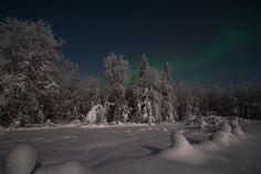 Snow and polar lights | snow, polar light, winter, frost