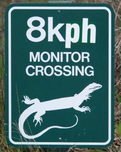 Monitored Crossing! :) by john.dart, via Flickr Australian roadsign
