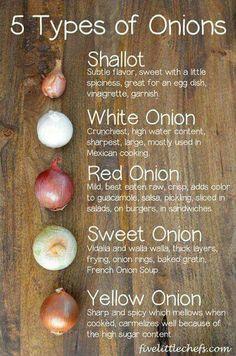 5 types of onions -- fivelittlechefs.com