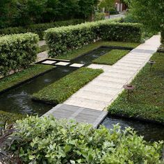 """Peter Fudge Gardens. """"Drifts of plants under ornamental pears.Shade in a garden in the summer heat is vital in a warm…"""""""