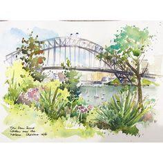 Sydney Harbour bridge from Wendy's Secret Garden #watercolour #watercolor #usk #sydney#sydneyharbour #sydneyharbourbridge #wendyssecretgarden #secretgarden #bridge #pleinair #wendywhiteleyssecretgarden #garden