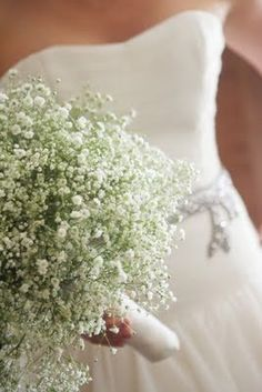 Baby's Breath Only?