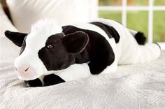 Giant Plush Animal Body Pillow Large Cow Soft Stuffed Maternity Support L Big Stuffed Animal, Stuffed Animals, Stuffed Toys, Cows Mooing, Cow Kitchen Decor, Giant Plush, Cow Gifts, Always Cold, Plush Animals
