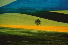 Franco Fontana, Landscape, 1978