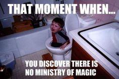 Harry, Ron en Hermelien geraken het Ministerie van toverkunst binnen door zich via een toilet door te spoelen
