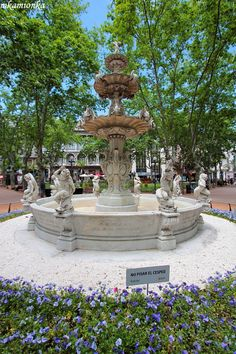 Fuente de los querubines - Plaza Matriz Ciudad Vieja - Montevideo
