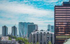 Spotting skylines... and some famous bridge  . . . #erasmusbrug #derotterdammer #rotterdam #weekendsinrotterdam #citytrip #sky #skyline #loverotterdam #rotterdam_holland #visitrotterdam #Rottergram #ROTTURBAN #rotterdamdaily #netherlandsvacations #rotterdam_gallery #gespotin010  #rotterdamhotspots #stadrotterdam #igersrotterdam #htsptrotterdam #instanetherlands #wonderful_holland #bestofnetherlands #visit_holland #dutch_connextion #rotterday  #architecture #architecturelovers #photooftheday…