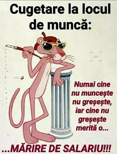 Pink Panter, My Photos, Jokes, Humor, Funny, Chistes, Humour, Memes, Moon Moon