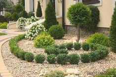 Előkertek Lawn And Landscape, Landscape Design, Garden Park, Front Yard Landscaping, Landscaping Ideas, My Secret Garden, Topiary, Outdoor Gardens, Home And Garden