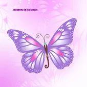 immagini di farfalle