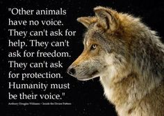 Humanity must be their voice...