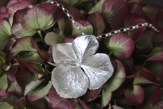 Hydrangea, Inspiration, Plants, Jewelry, Biblical Inspiration, Jewlery, Jewerly, Schmuck, Hydrangeas