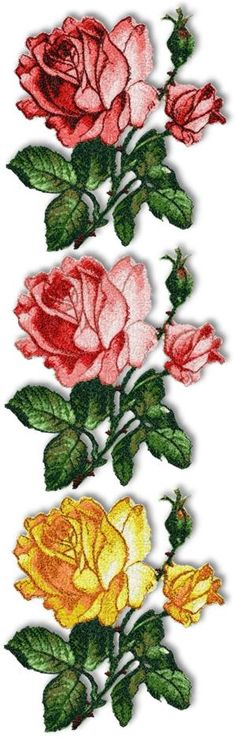 Advanced Embroidery Designs - American Beauty Rose