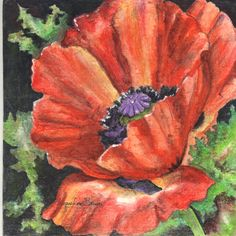 Pastel Poppy....7X7 soft pastel by Jacqueline Brown