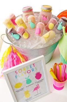 Fruity Flamingo Party-Sorbet | The TomKat Studio
