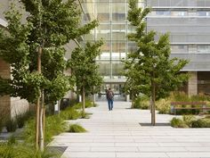 Smith Cardiovascular Research Building / San Francisco, CA, 2012 Architect: Smithgroup / Jim Jennings Architecture; landscape: Andrea Cochran; photography: Bruce Damonte, Marion Brenner / The northern portion of the project creates a striking new campus entrance.