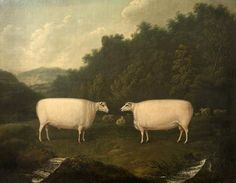 Collings Sheep, by Thomas Fairbairn Wilson Indian Paintings, Your Paintings, Animal Paintings, Wooly Bully, Primitive Painting, Sheep Breeds, Art Through The Ages, Sheep Art, Cow Art