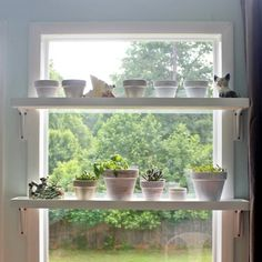 Diy Window Plant Shelf Kitchen Window Sill Window Shelf For 3 Things Best To Create Diy Plant Stands Herb Garden In Kitchen Diy Floating Window Shelves Design Sponge Plant Shelves In Window I Need To… Window Shelf For Plants, Kitchen Window Shelves, Window Sill Decor, Kitchen Window Sill, Window Ledge, Plant Shelves, Window Ideas, Kitchen Windows, Shelf Over Window
