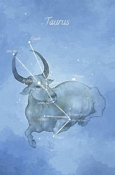 Astronomy art Taurus constellation by LaPetiteMascarade on Etsy Taurus Art, Taurus Bull, Taurus Woman, Taurus And Gemini, Zodiac Art, My Zodiac Sign, Astrology Zodiac, Astrology Signs, Zodiac Taurus