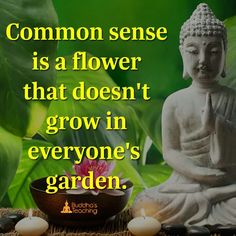 Common sense is like a flower that doesn't grow in everyone's garden.