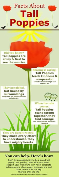 Being a tall poppy -