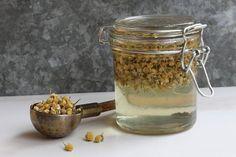 How to make Glycerites ~ Mountain Rose Herbs