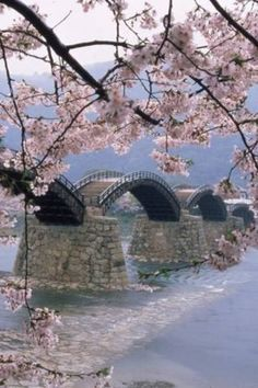 Kintai Bridge in Iwakuni Japan. Iloved this bridge. Was stationed in IWakuni for 1 year. Places Around The World, Oh The Places You'll Go, Places To Travel, Places To Visit, Around The Worlds, Japan Travel, Asia Travel, Dream Vacations, Osaka