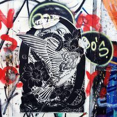 Berlín bird