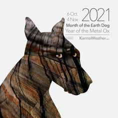 Monthly predictions for each day of the Earth Dog Month of October 2021, for the 12 animals of the Chinese Zodiac: Rat, Ox, Tiger, Rabbit, Dragon, Snake, Horse, Goat, Monkey, Rooster, Dog and Pig Chinese New Year Dates, China, Dog Years, Serpent, Chinese Zodiac, Rats, Monkey, Rooster, Horses