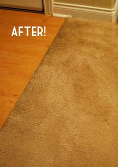 Home-made carpet cleaner.  Just tried it on an old stain and it actually works.