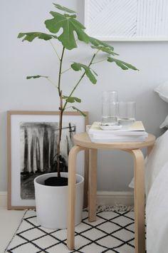 Summer in the bedroom - Hege in France diamond rug kinfolk magazine fig tree white sheets
