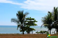Panama real estate that you can afford.  This beach front property in the charming town of Puerto Armuelles Panama is only $55K.  Find out more here.