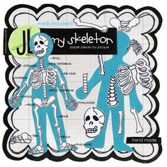 My Skeleton (All About Me) by Jacque - Perfect for a magnetic skeleton! Cc Cycle 3, Human Body Unit, Skeleton Bones, Teachers Corner, Anatomy Study, Classroom Fun, Anatomy And Physiology, List, Halloween Ideas