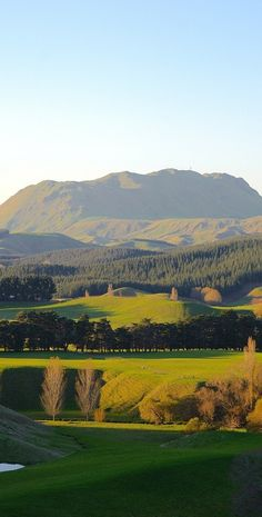 Te Mata Peak, Hawke's Bay, NZ | http://www.viewretreats.com/retreat/search?main-search%5Binfo%5D=hawkes+bay #travel