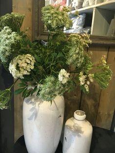 Prachtige dille in vaas! Interesse, ga naar Bellisimo wonen & genieten in Naaldwijk! Hier kunt u Annefleurs bloemwerk kopen!