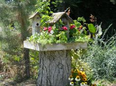 wonderful way to display a birdhouse! I need a stump ... then a wooden box, planted with flowers and small plants, birdhouse nestled amongst them. Love it!