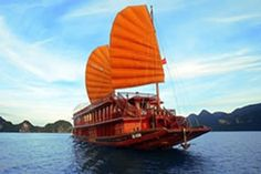 """Vietnam Tours journey offers you great travel experiences from scenic cruise in Halong bay to cooking class in Hoi An. Vietnam Tours, Vietnam Travel, Vietnam War, Travel With Kids, Family Travel, Places Worth Visiting, Ha Long Bay, Travel Deals, Business Travel"
