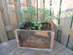 planter boxes out of scrap wood from deck