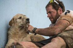 Arthur: #best #dog on #earth http://www.cribeo.com/actualidad/6020/la-historia-de-arthur-un-perro-al-que-le-dieron-media-albondiga-y-les-siguio-durante-700-km