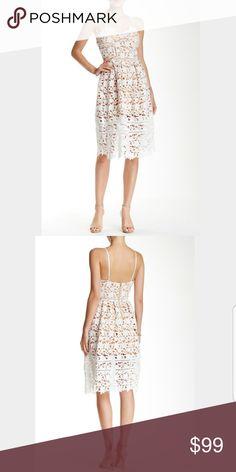 c767fd9413df  Few Moda  NWT 3D White Floral Dress Sz Large Few Moda 3D Floral White