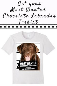 Most Wanted Chocolate Labrador T-shirt - Dog Tee Shirts -- 100% Cotton. Imported. Machine wash cold with like colors, dry low. Anvil relaxed fit, baby blue, white, yellow, crew neck tee, sayings, quotes, unisex, man, women, girls, boys. Dog Lover t shirts, Chocolate Labrador tee shirts, Dog Mugshot t-shirts, with graphics, most wanted t-shirt, cute dog shirts, Chocolate Labradors t-shirts. Lightweight, Classic fit, Double-needle sleeve and bottom hem