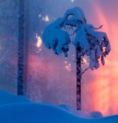 Rovaniemi  photo by Markko Juntilla